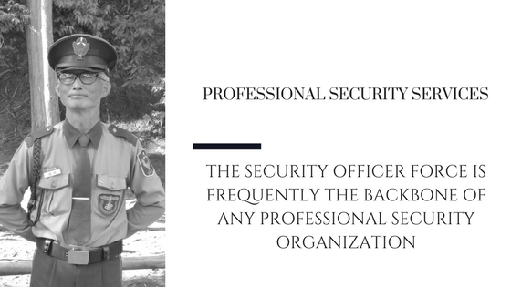 Professional Security Officer