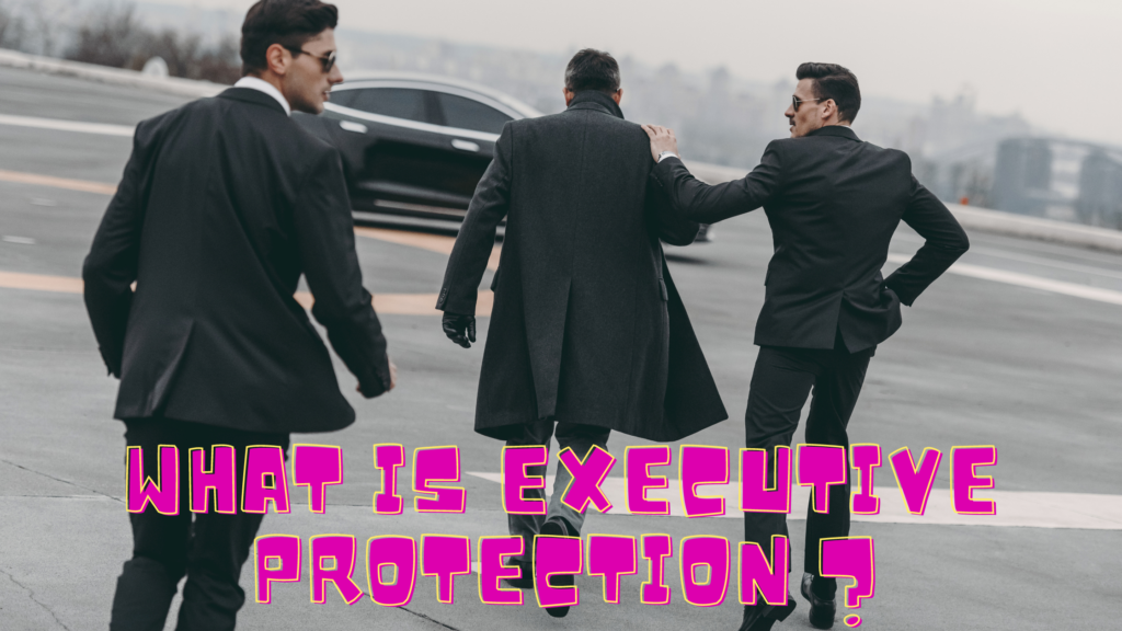 What is Executive Protection